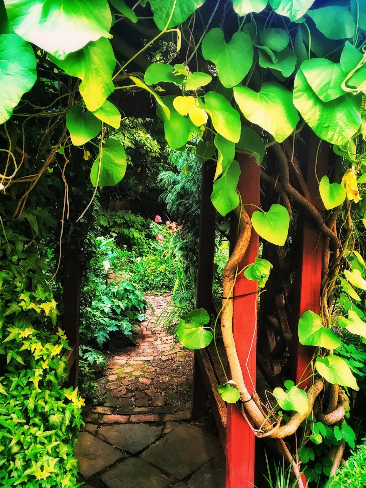 East Village community garden