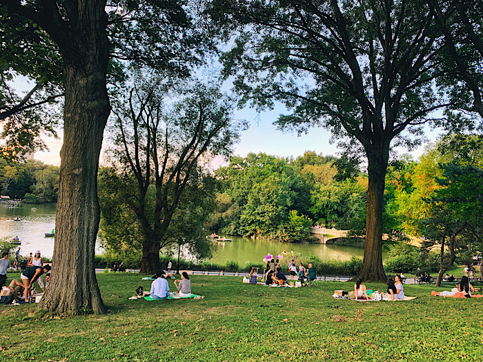 People picnicking in Central Park, seen during my Everywhere, Always New York City tour
