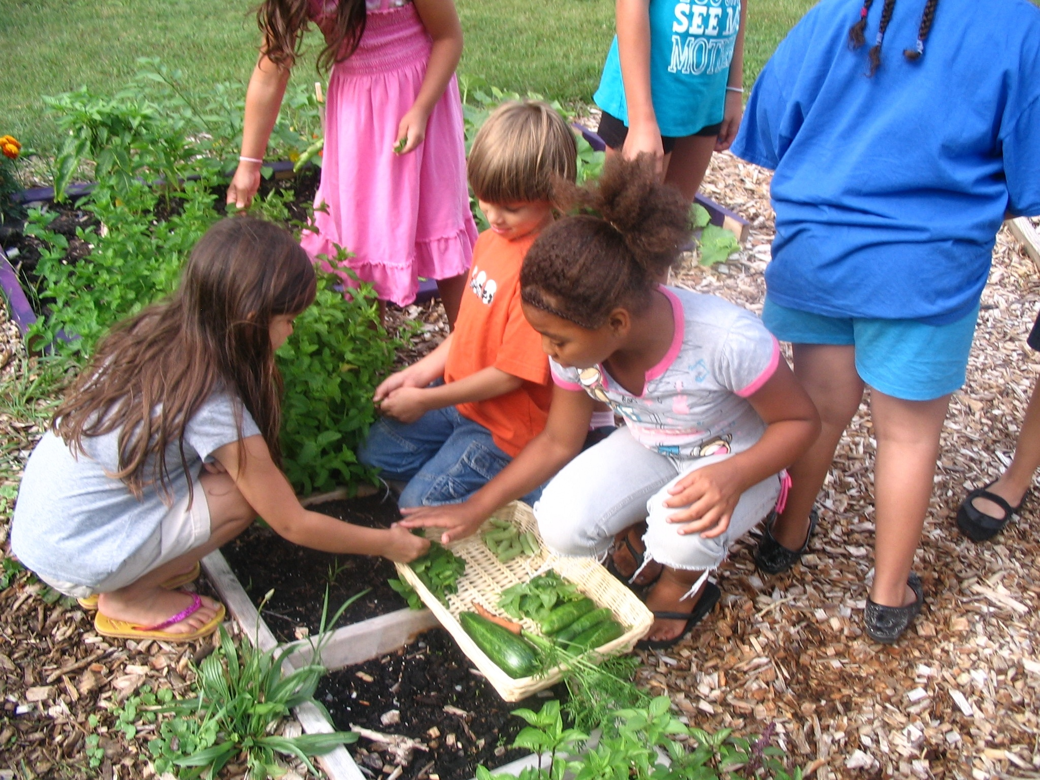 Literate For Life 5 Ways Gardening With Kids Increases