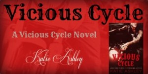 Vicious Cycle Banner