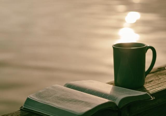 Mithu Sanyal über ihren Roman »Identitti«: »Ich wäre im Moment auch ungern weiß«