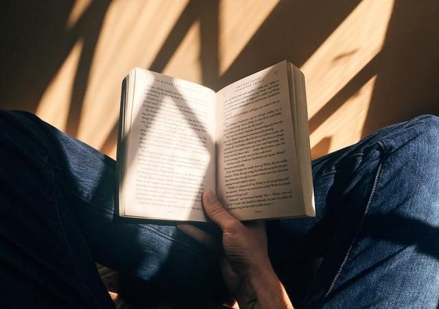 Peter Sloterdijk: Abrechnung mit den Querdenkern
