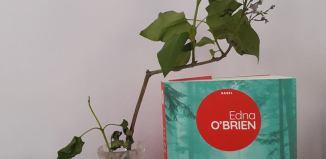 Scăunele roșii de Edna O'Brien-Editura Nemira-recenzie