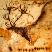 Archaeolgy / History