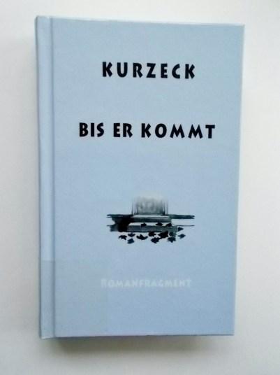 Peter Kurzeck: Bis er kommt