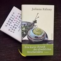 Juliana Kálnay: Eine kurze Chronik des allmählichen Verschwindens Wagenbach Verlag
