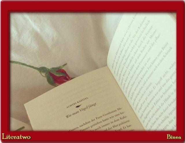 Die Seltsamen - Blick ins Buch