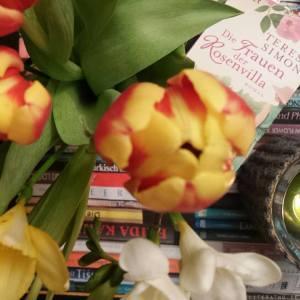 Die Frauen der Rosenvilla ~ Teresa Simon