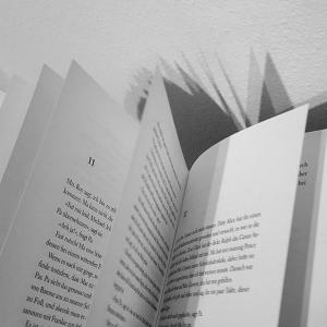 Vom Ende der Einsamkeit ~ Benedict Wells
