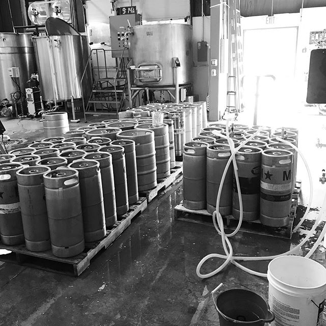 Another fresh batch of Misguided Angel IPA going in the kegs today! Tasting room is open Thursday and Friday from 4 to 8 PM, Saturday from 12 to 7 PM and Sunday from 12 to 4 PM. #lithermanslimited #mhplikes making deliveries