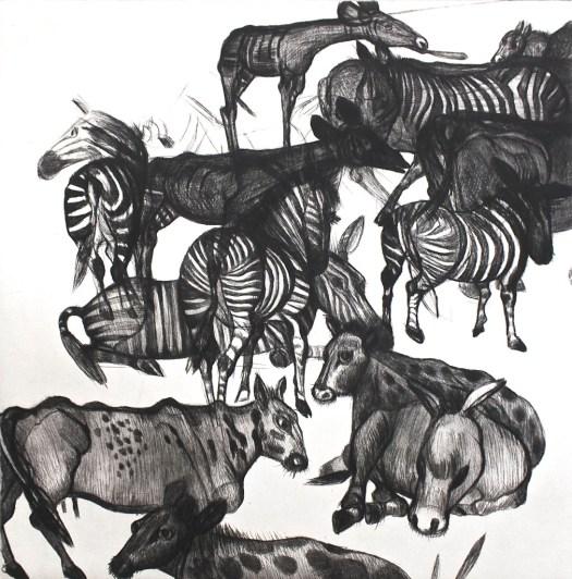 Zebror kopia 2