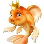 Картинка профиля Золотая рыбка