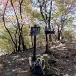 鳴虫山 <1104m> (JA/TG-048) 栃木県日光市