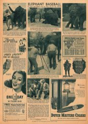 Press_Pictures St. Louis Post-Dispatch_1945_10