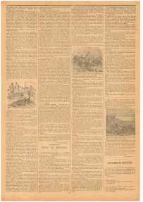 """""""Маленький провинциал"""" (Le Petit Provençal) № 26 от 20.11.1898, с. 3"""