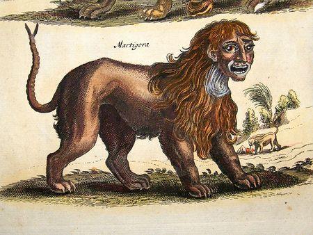 Мистическая Мантикора - гравюра из средневекового издания