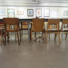 ANHE 65 IS MY FAVOURITE CAT CAFE IN TAIPEI
