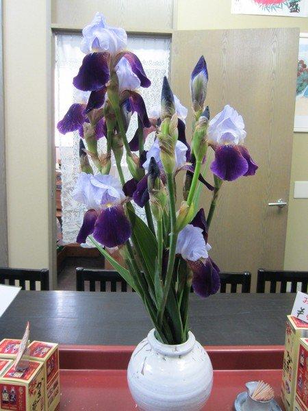 flowers japan 34