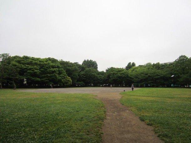 cluster of art galleries in tokyo 1