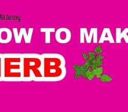 How to Make an Herb in Little Alchemy