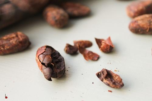 cocoa nib