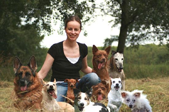 Samenmetmijnhonden