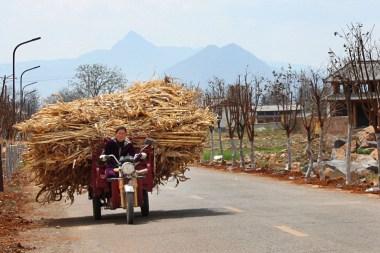 In der Nähe von Lijiang