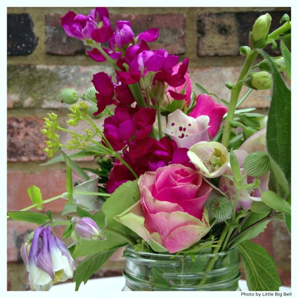 Pink-flowers-4