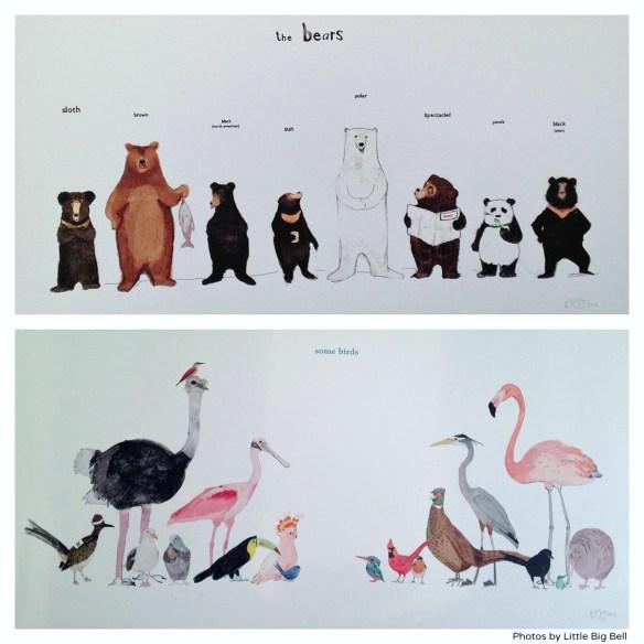 Eight-bear