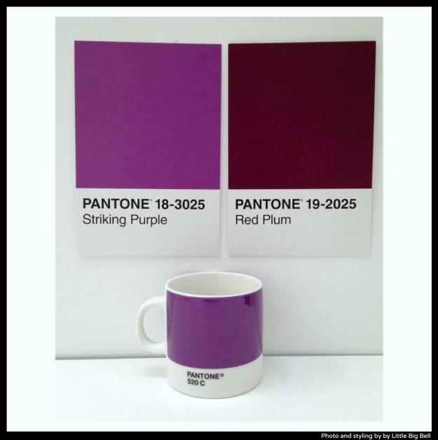 Pantone-purple-photo-by-Little-Big-Bell