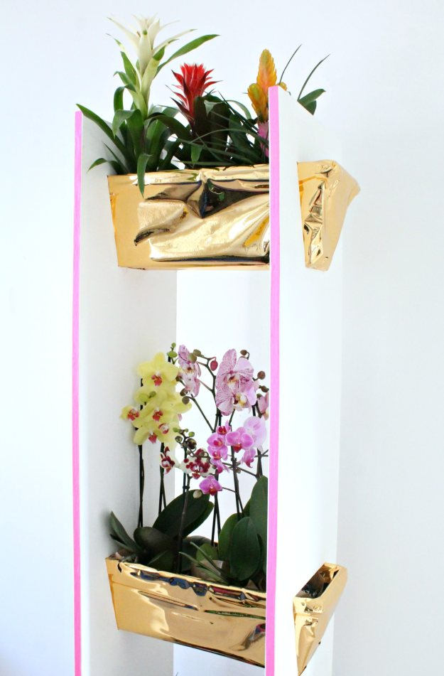 Guzmania-and-orchids-plant-shelf-styled-and-photo-by-Geraldine-Tan-Little-Big-Bell