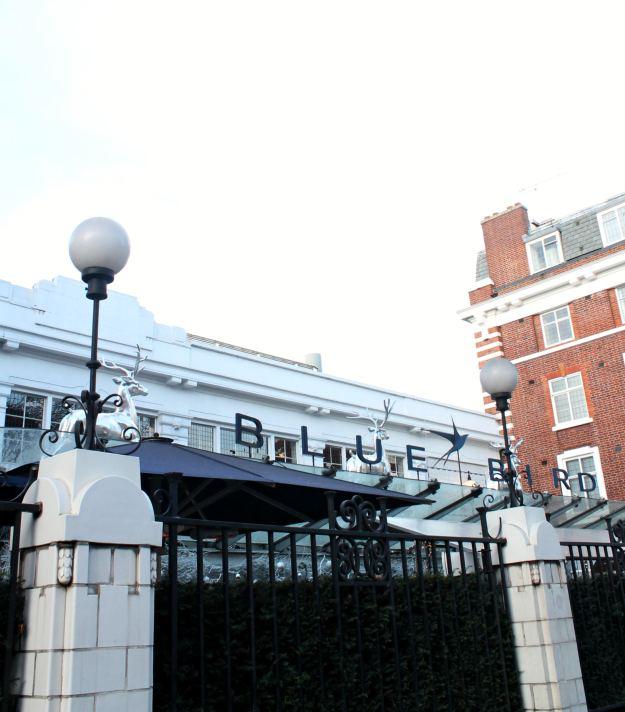 blue-bird-cafe-little-big-bell