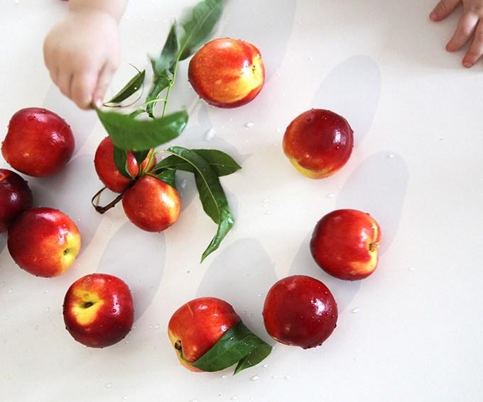 Nectarine & Mint Purée
