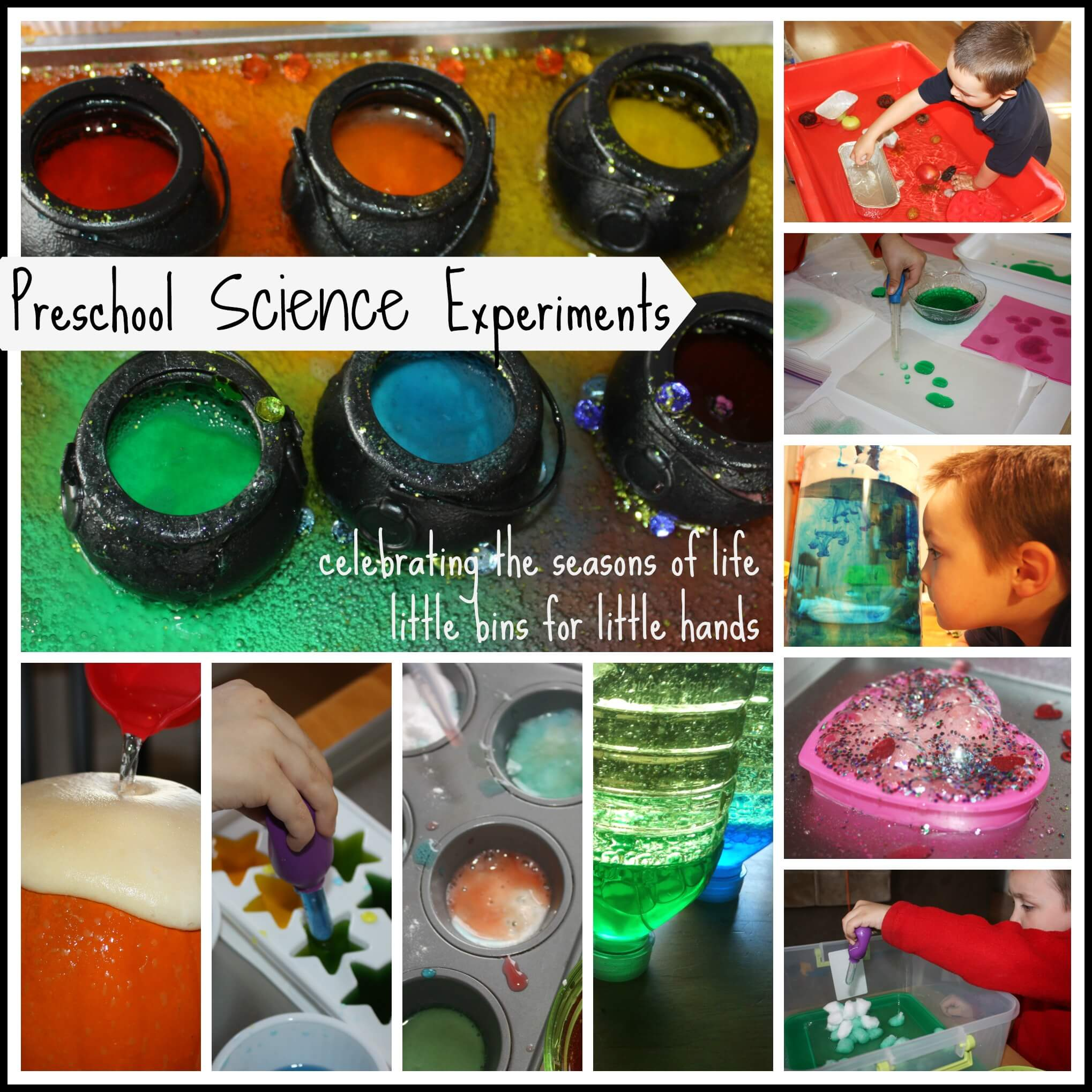 Seed Jar Spring Science Experiment Plant Growing
