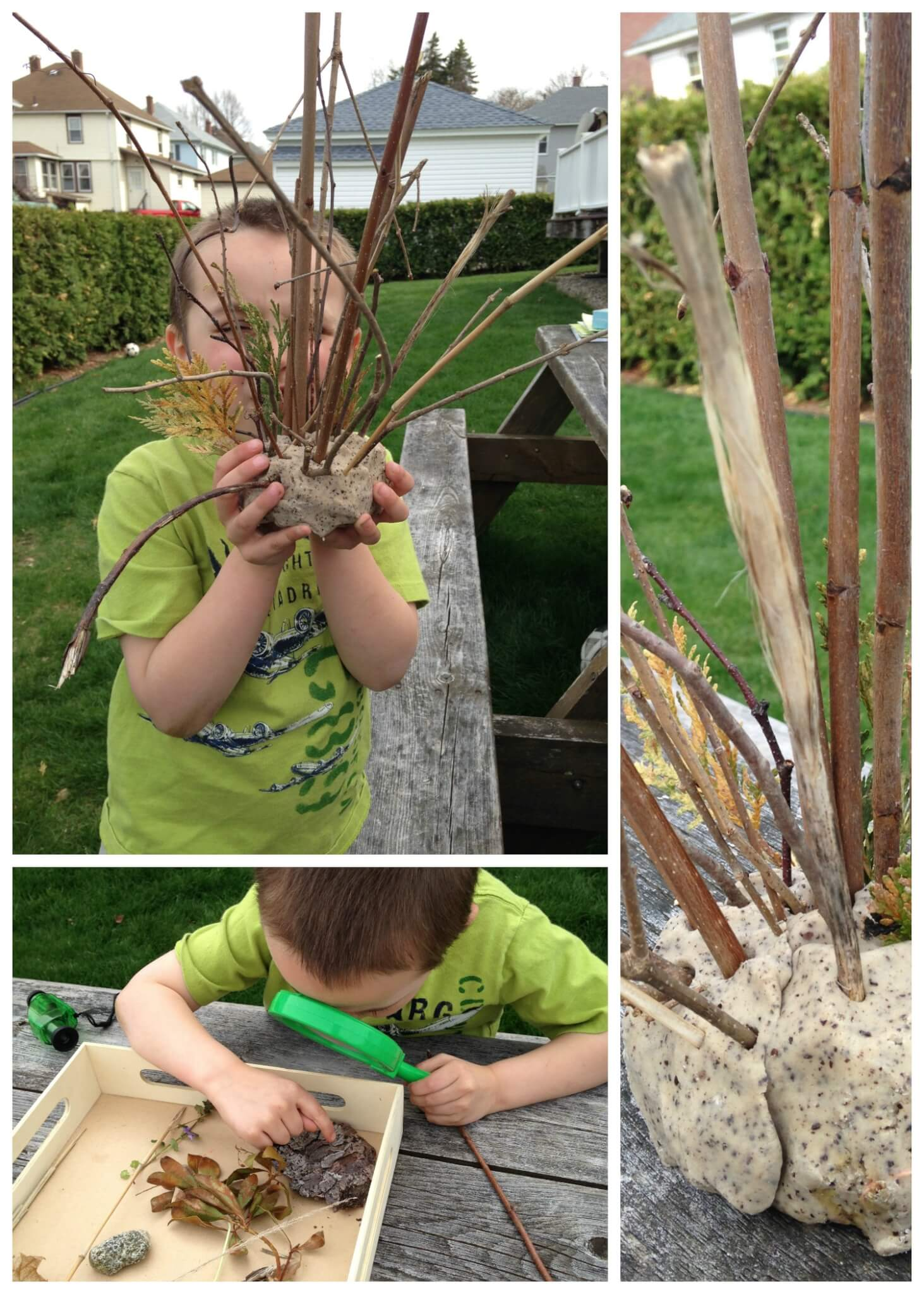 Backyard Activities For Nature Science Sensory Play And Early Learning