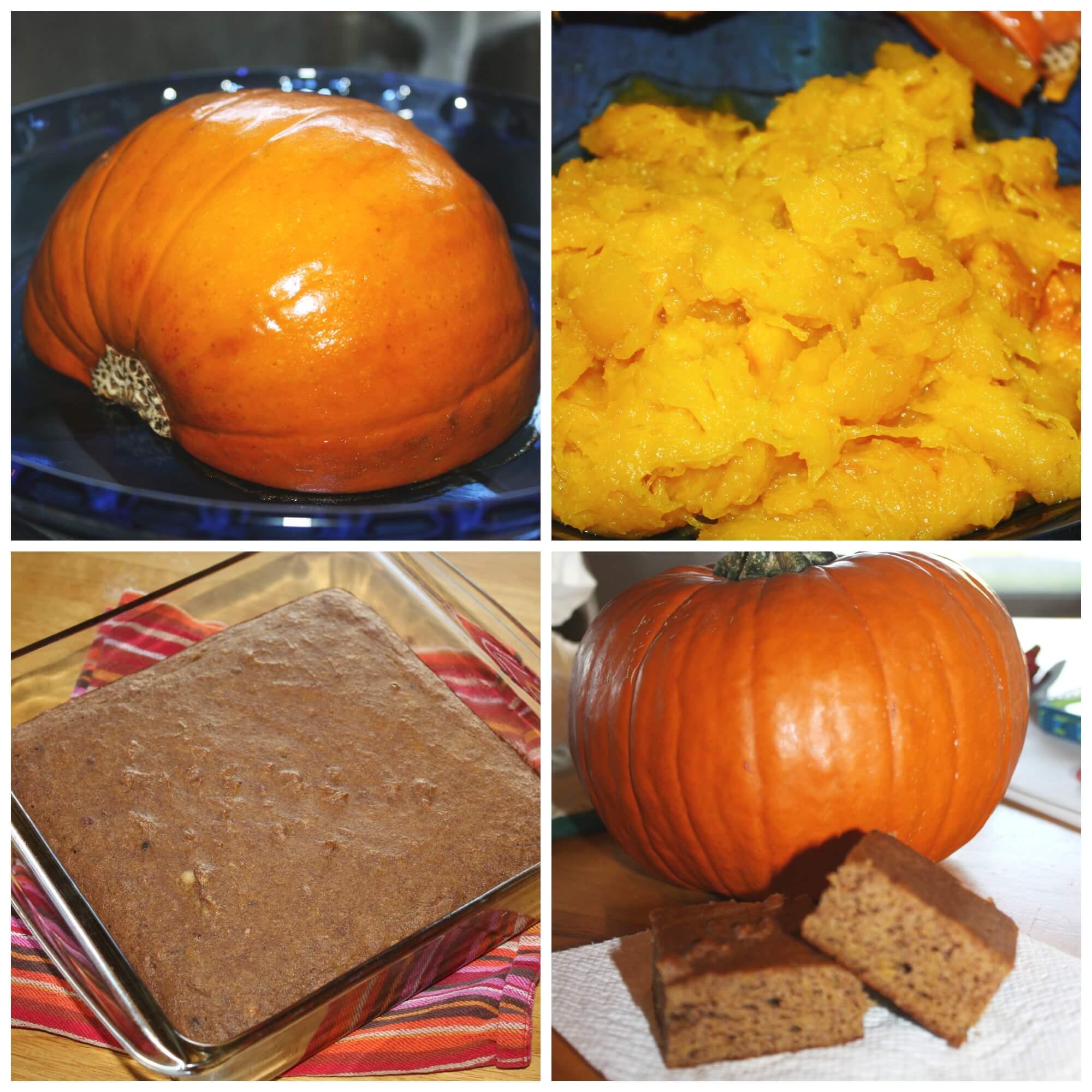 Pumpkin Activities Preschool Learning And Play