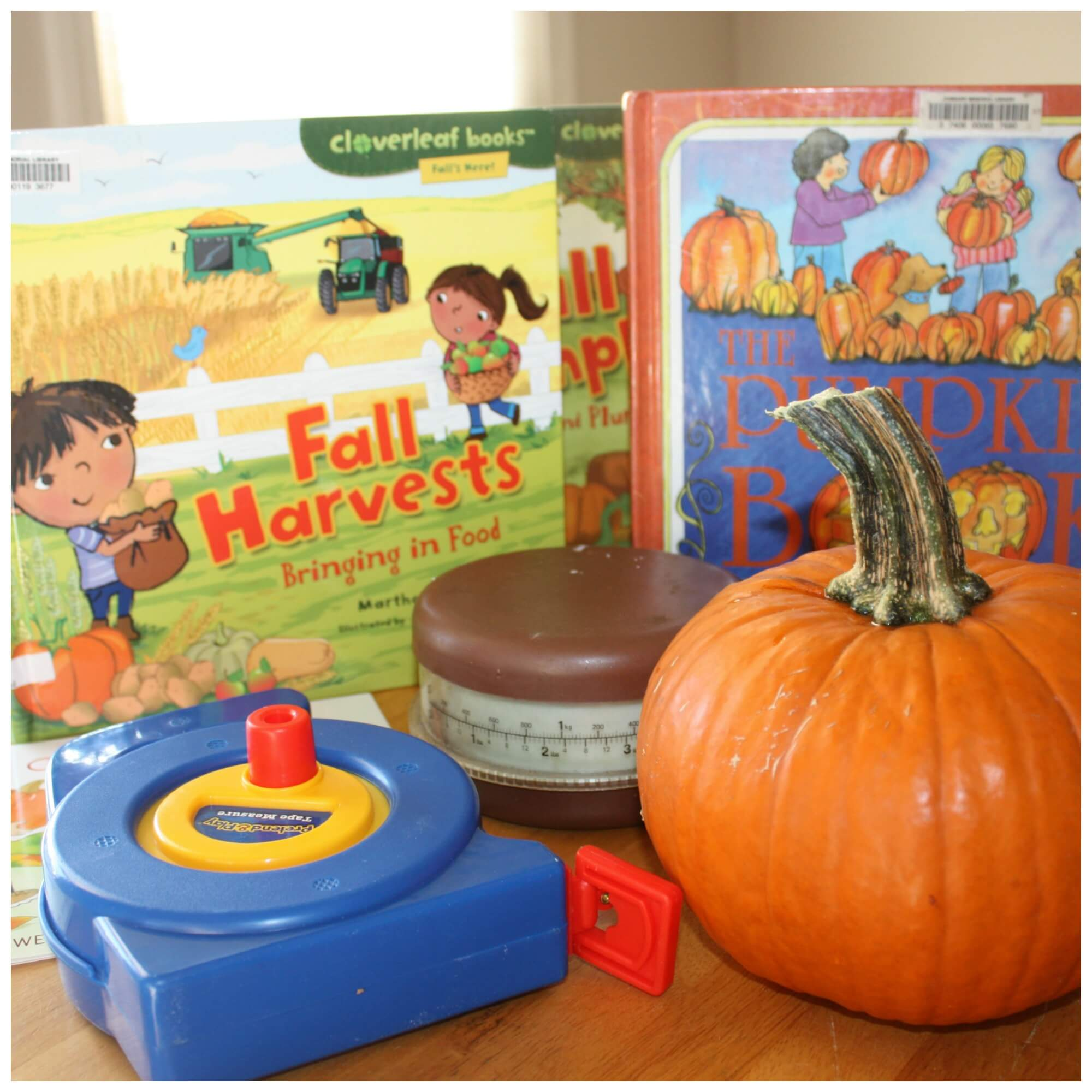 Pumpkin Activities And Learning Ideas For Fall
