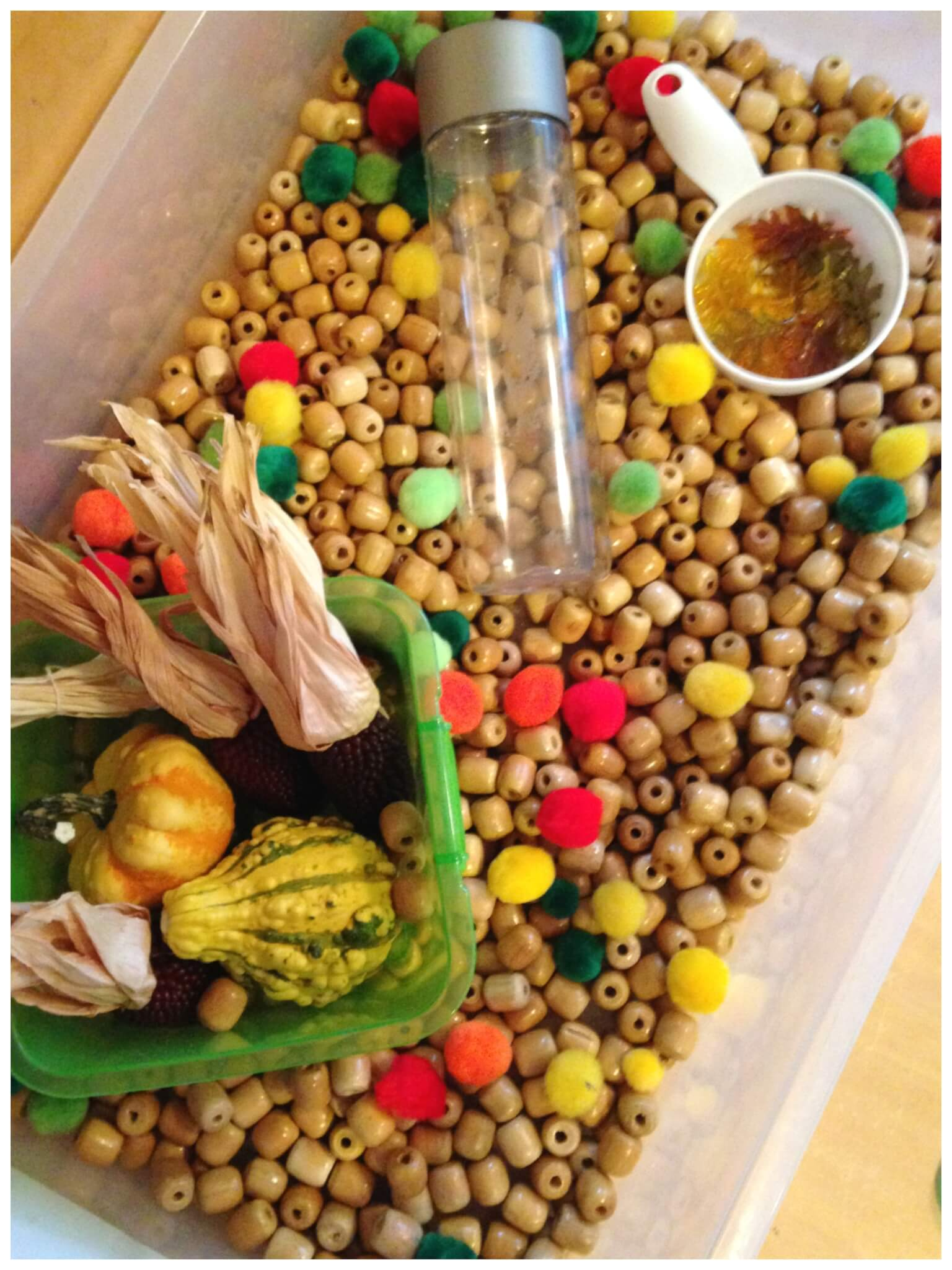 Fall Harvest Sensory Bin Play Fine Motor