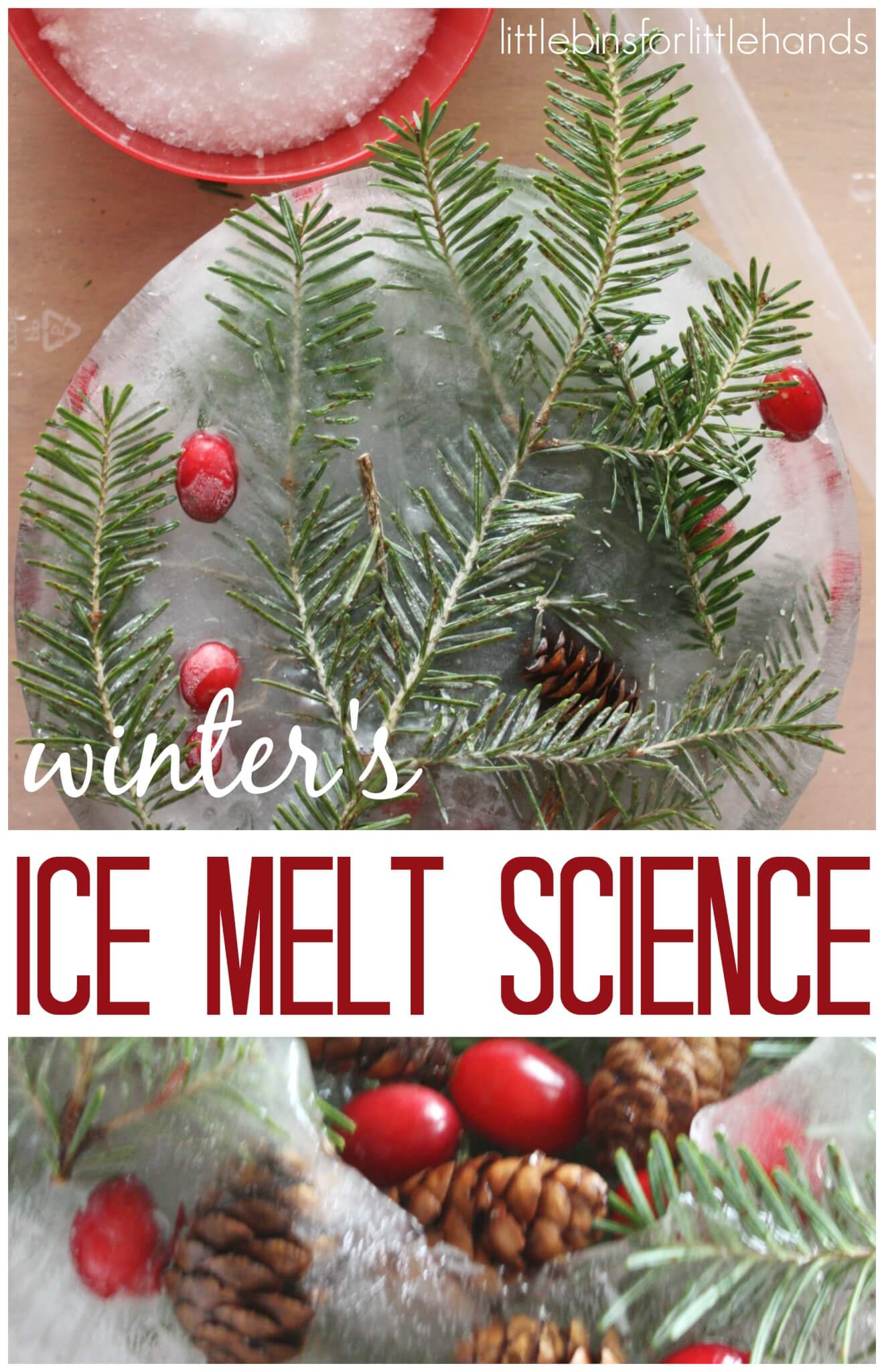 Kids Winter Activities For Science And Sensory Play