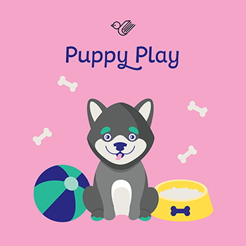 Puppy play book box - order now