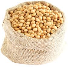 Soy Products Hyaluronic Acid