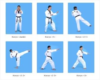 koryo ready stance