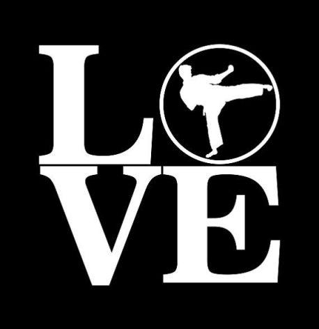 love martial arts