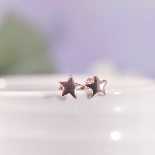 Rose Gold Filled Star Stud Earrings