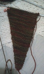 Autumn coloured Scarf