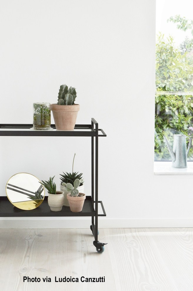 Danish Design Bar Cart, Succulents, White Washed Floor
