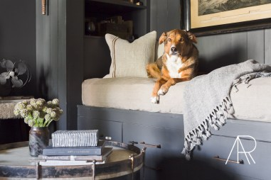 Handsome dog lounging on linen covered daybed in room with gray paneled walls