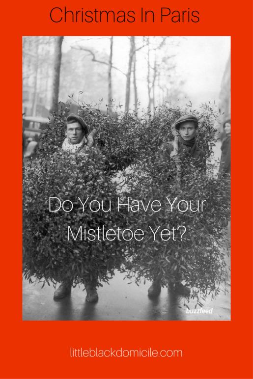 Do you have your mistletoe yet? littleblackdomicile christmas and hanukkah on pinterest