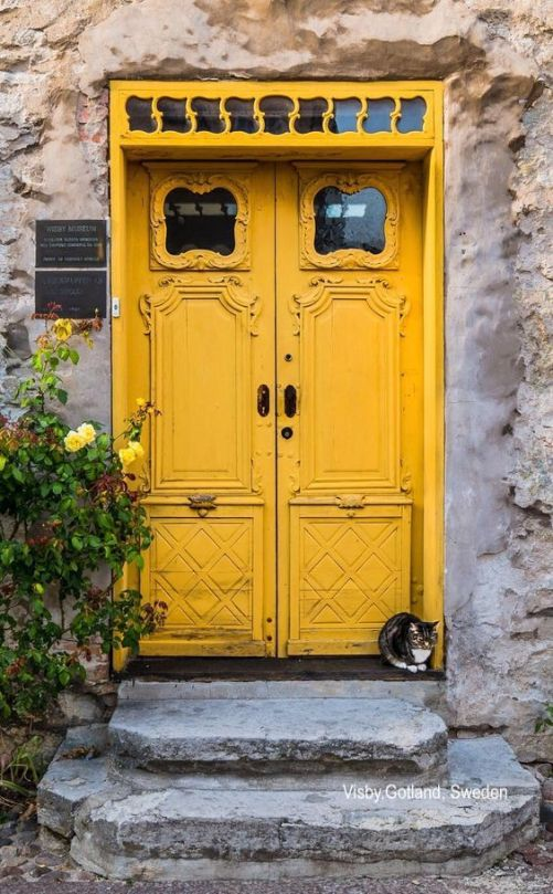 visby gotland sweden- yellow double door- windows-cat on stone steps