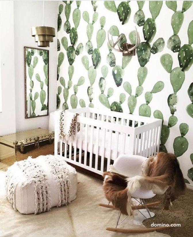 domino cute cacti nursery
